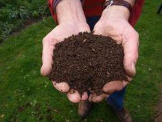 6 engrais naturels et gratuits redoutablement efficaces