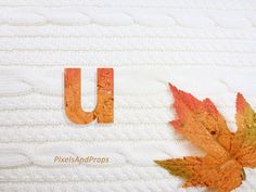 Lowercase letter u with glitter leaf and sweater knit. #fall #autumn #alphabet #typography #initial #monogram #font   maple leaf