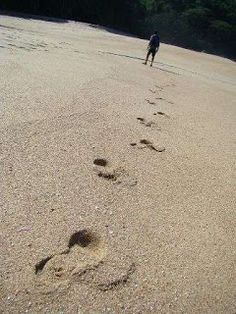 Turismo em SC: Trilhas Que Levam a Praias Desertas - Florianópoli...