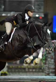 THIS HUNTER! OMG! (and that she is riding in a flat saddle, no knee rolls!! my kinda girl!)