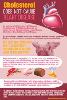 Cholesterol Does Not Cause Heart Disease http://www.ionizeroasis.com/cholesterol-does-not-cause-heart-disease