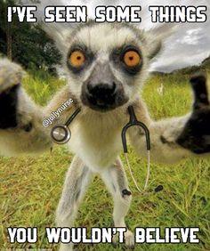 But haven't we all?  #scrubslife : : : : : : : : #jollynurse #nursesunite #rnproblems #rnlife #rnhumor #nursesbelike #medstudentproblems #doctorslife #doctorintraining #doctorinthehouse #cnaproblems #erproblems #ornurse #healthcareprofessional #healthcarehumor #medicalhumor #hospitalhumor #surgtech #nursingproblems
