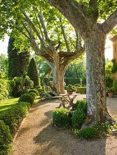 I like this crushed gravel Gravel terrace, ironwork stairway to viewing platform Provence Garden, Provence France, Gravel Garden, Pea Gravel, Porches, Garden Pictures, French Countryside, Dream Garden, Backyard Landscaping