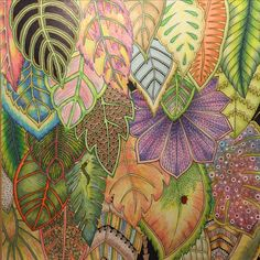 Inspirational Coloring Pages #magicaljungle #selvamagica #johannabasford…