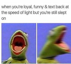 Funny Pictures with Captions Memes that will Make You Laugh 17