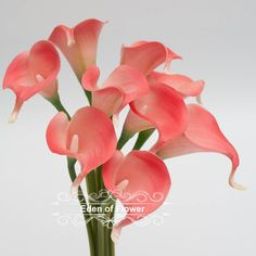 Coral Calla Lilies Real Touch Flowers Bouquet for Bridal Bouquets Wedding Centerpieces Home Decoration Coral Wedding 9 stems by EdenOfFlower on Etsy https://www.etsy.com/listing/234893802/coral-calla-lilies-real-touch-flowers
