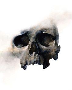 Skull, Watercolor, x : Art Skull Artwork, Skull Painting, Skull Drawings, Watercolor Painting, Skull Reference, Skull Anatomy, Skull Sketch, Skull Illustration, Skulls