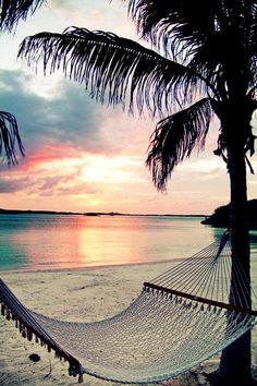 #summer #beach #sea #sand #sunset #palmtree #hammock #relaxing