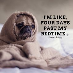 16 Hilarious Can't Sleep Quotes and Sayings Only Insomniacs will Understand