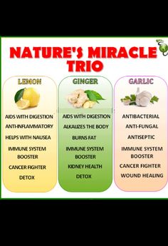 Lemon, ginger, garlic food facts