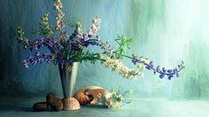desktop beautiful wallpaper hd