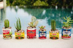 Gardenhada.com 다육식물+깡통