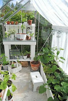 potting bench in the greenhouse Small Greenhouse, Greenhouse Gardening, Vegetable Gardening, Small Gardens, Outdoor Gardens, Dream Garden, Home And Garden, Victorian Greenhouses, Greenhouse Interiors