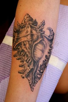 I love the idea of a conch shell tattoo. It's a lucky symbol in Buddhism Funny Tattoos, Love Tattoos, Beautiful Tattoos, Body Art Tattoos, Tatoos, Sea Tattoo, Ocean Tattoos, Conch Shell Tattoos, Idle Hands Tattoo