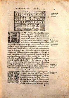 "Готский алфавит (Alpabetu Gothicu).  Iohannes Magnus. ""Gothorum Sveorum que Historia"" (1554). Visigothic, Anthropology, Event Ticket, Historia, Anthropologie"