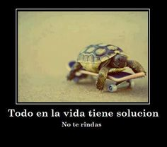 Todo en la vida tiene solución, no te rindas!