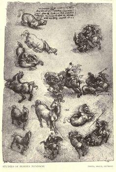 Leonardo Davinci Sketch - Studies of Horses