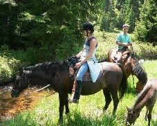 Horse Riding - another great way to see the scenery
