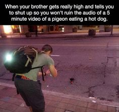 Jeez your brother needs to respect the pigeon privacy