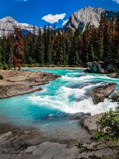 YOHO NATIONAL PARK - CANADIAN ROCKIES