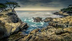 Lone Cypress by Francis Galvez on 500px
