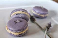 Lavender Macarons with Honey Earl-Grey Buttercream (Fresh lavender from Whole Foods, Bob's red mill Almond flour from Walmart)