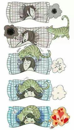 Quand on a un problème et que ton chat te console
