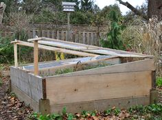 Three Dogs in a Garden: Building a Cold Frame