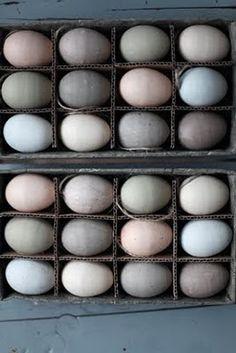 Soft Easter Eggs!