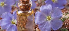 Descopera beneficiile uimitoare ale uleiului de in