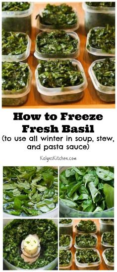 How to Freeze Fresh Basil and Ideas for Using Frozen Basil Here are instructions for How to Freeze Fresh Basil, a method I've used for more than 20 years. The frozen basil is great all winter in soup, stew, and pasta sauce, and this post has links to some Freezing Basil, Freezing Fresh Herbs, Freezing Vegetables, Fruits And Veggies, Storing Fresh Basil, Freezing Bread, Herb Recipes, Canning Recipes, Healthy Recipes