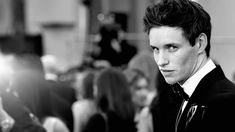 eddie redmayne Wallpaper HD Wallpaper
