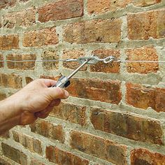 How To Make A Wire Espalier For A Garden Wall