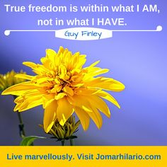 True freedom is within what I AM, not in what I HAVE. Freedom, Thoughts, Guys, Words, Garden, Liberty, Political Freedom, Garten, Lawn And Garden