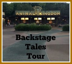 An overview of the Backstage Tales Tour at Disney's Animal Kingdom park, an adventure that takes guests behind the scenes at the park