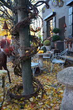 Dirt Simple | Gardening and Landscape Blog by Deborah Silver - Part 7