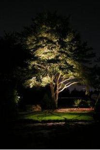 Os tipos de iluminação para o paisagismo   Irrigação