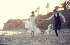 Ricki Lake included her goldendoodle Jeffie and English bulldog Pacha in her beach wedding. The talk show host married Christian Evans in Santa Barbara, California. Photo: Facebook / Ricki Lake