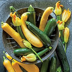 Get growing!!  Squash and zucchini