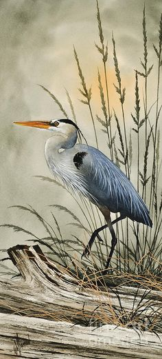 Heron Painting - Natures Beauty by James Williamson