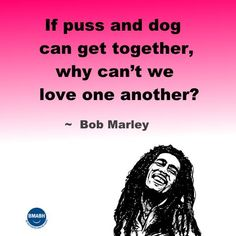 Bob Marley quotes-If puss and dog can get together, why can't we love one another. visit www.bmabh.com for more inspirational quotes. Be Motivated And Be Happy - bmabh.com