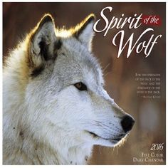 2016 SPIRIT OF THE WOLF DAILY BOXED BOX $14.99 CALENDAR WILLOW CREEK PRESS {jg} Great for mom, dad, sister, brother, grandparents, aunt, uncle, cousin, grandchildren, grandma, grandpa, wife, husband, relatives and friend. HT http://smile.amazon.com/dp/B0125V2E2I/ref=cm_sw_r_pi_dp_-oemwb1N06RB0