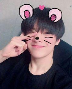 🌻stray kids🌻- I.N Felix Stray Kids, Lee Min Ho, Jackson, Wattpad, Kpop, Lee Know, Bias Wrecker, Boys Who, K Idols