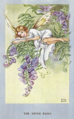 The Verch Fairy