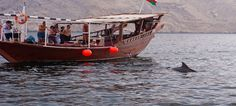 Dolphin Khasab Tours provides Full Day Dhow Cruise Timing: 10.00 AM to 4.00 PM. Enjoy an amazing dhow cruise experience with our traditional decorated Omani Dhow.