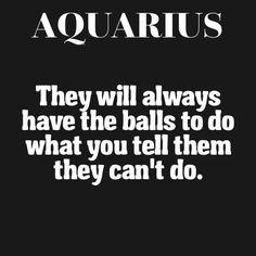 Aquarius Funny, Astrology Aquarius, Aquarius Traits, Aquarius Love, Aquarius Quotes, Aquarius Woman, Zodiac Signs Aquarius, My Zodiac Sign, Zodiac Quotes