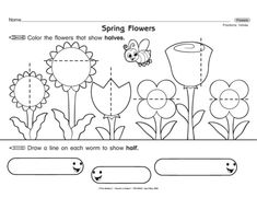This math worksheet asks students to decide which flowers are divided in half. Kiddos then divide each worm in half. A great introduction to fractions for young mathematicians!
