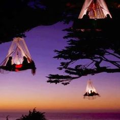 I want to do this! & Hanging Tent Platform | Hanging tent Tents and Treehouses