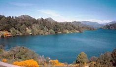 Lago Gutiérrez em Bariloche #argentina #viagem
