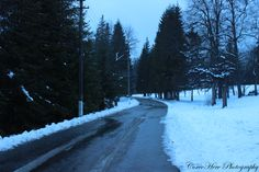 Lonely road through the trees #nature #road #borsec #vacation #romania